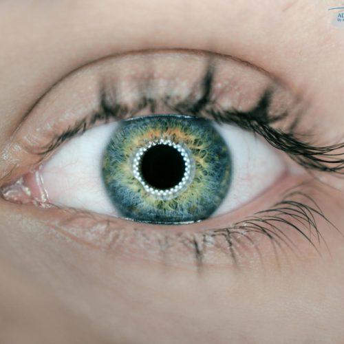 עין אנושית - תקריב